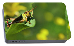 Green Grasshopper Portable Battery Charger by Christina Rollo