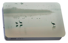 Portable Battery Charger featuring the photograph Sunrise Over The Hula Valley Israel 2 by Dubi Roman