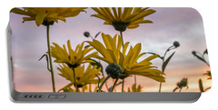Sunset Delight Portable Battery Charger