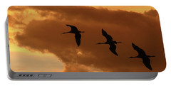 Sunset Flight Portable Battery Charger