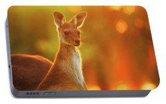 Portable Battery Charger featuring the photograph Sunset Joey, Yanchep National Park by Dave Catley