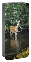 Portable Battery Charger featuring the photograph Sunset River Doe by Judy Johnson