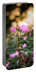 Portable Battery Charger featuring the photograph Sunset Roses by Parker Cunningham