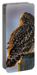 Sunset Short-eared Owl Portable Battery Charger