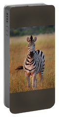 Sunset Zebra Portable Battery Charger by Bruce W Krucke