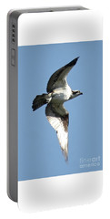 Sunshine Osprey Portable Battery Charger by Carol Groenen