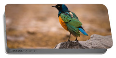 Superb Starling Portable Battery Charger by Adam Romanowicz