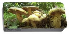 Surprise Fungi In Gibbs Garden Portable Battery Charger