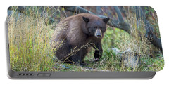 Surprised Bear Portable Battery Charger