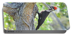 Surprised By Pileated Portable Battery Charger
