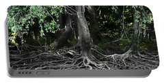 Portable Battery Charger featuring the photograph Survival Of The Fittest by Debra Forand