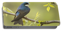 Swallow Portable Battery Charger by Mircea Costina Photography