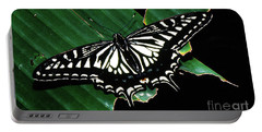 Swallowtail Butterfly- Close Portable Battery Charger