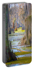 Swamp Curtains In February Portable Battery Charger