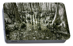 Portable Battery Charger featuring the photograph Swamp In Contrast by Andy Crawford