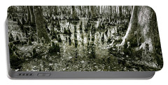 Swamp In Contrast Portable Battery Charger by Andy Crawford