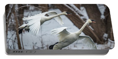 Swans Landing Portable Battery Charger