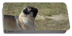 Sweet Face Of A Pug Dog Portable Battery Charger by DejaVu Designs