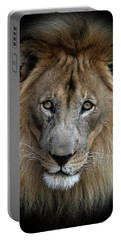 Sweet Male Lion Portable Battery Charger
