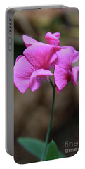 Sweet Pea Of Strawberry Creek Portable Battery Charger by Suzanne Oesterling