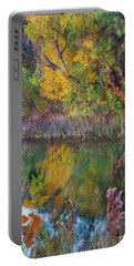 Sycamores And Willows Portable Battery Charger by Tim Fitzharris