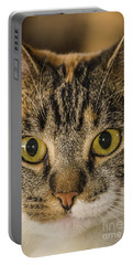 Symmetrical Cat Portable Battery Charger
