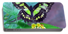 Tailed Jay Visits Lantana Portable Battery Charger