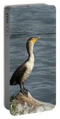 Take My Picture - Cormorant Portable Battery Charger