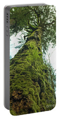 Tall Tall Tree Portable Battery Charger