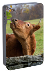 Portable Battery Charger featuring the photograph Tasty by Bill Wakeley