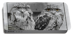 Tawney Frogmouths Portable Battery Charger