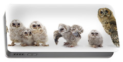 Tawny Owl Family Portable Battery Charger