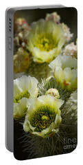 Teddy Bear Cholla-cylindropuntia Bigelovii Portable Battery Charger