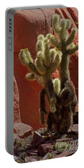 Teddybear Cholla Cactus-signed-#3322 Portable Battery Charger