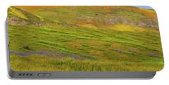 Temblor Range Spring Color Portable Battery Charger