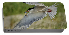 Tern Portable Battery Charger