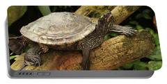 Tess The Map Turtle #3 Portable Battery Charger