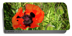 Portable Battery Charger featuring the photograph Teton Poppy by Greg Norrell