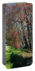 Texas Fall Portable Battery Charger