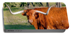 Texas Hill Country Longhorn 9962a Portable Battery Charger