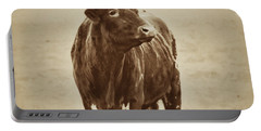 Texas Longhorn And The Windmill Portable Battery Charger