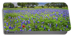 Texas Spring  Portable Battery Charger