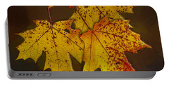 Portable Battery Charger featuring the photograph That Time Of Year by Paul Wear