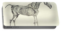 The Anatomy Of The Horse Portable Battery Charger