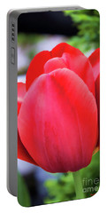 The Tulip Beauty Portable Battery Charger