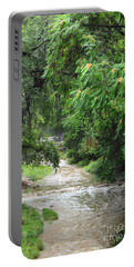 Portable Battery Charger featuring the photograph The Big Ditch Of Silver City Has A Story by Natalie Ortiz