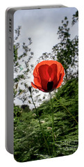 Portable Battery Charger featuring the photograph The Big Red 02 by Arik Baltinester