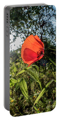 Portable Battery Charger featuring the photograph The Big Red by Arik Baltinester