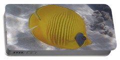 The Bluecheeked Butterflyfish Red Sea Portable Battery Charger