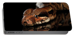 The Boa Constrictors, Isolated On Black Background Portable Battery Charger by Sergey Taran